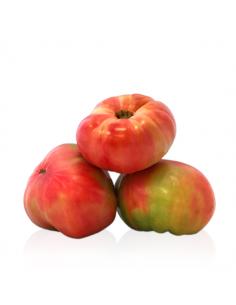Tomate Barbastro (1kg)