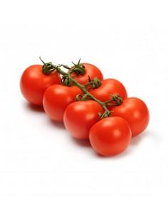 Tomate de Rama (Bandeja 1kg)