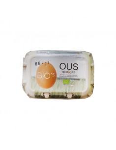 Huevos Ecológicos (6 uds)