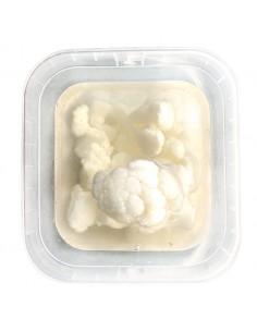 Oliva coliflor