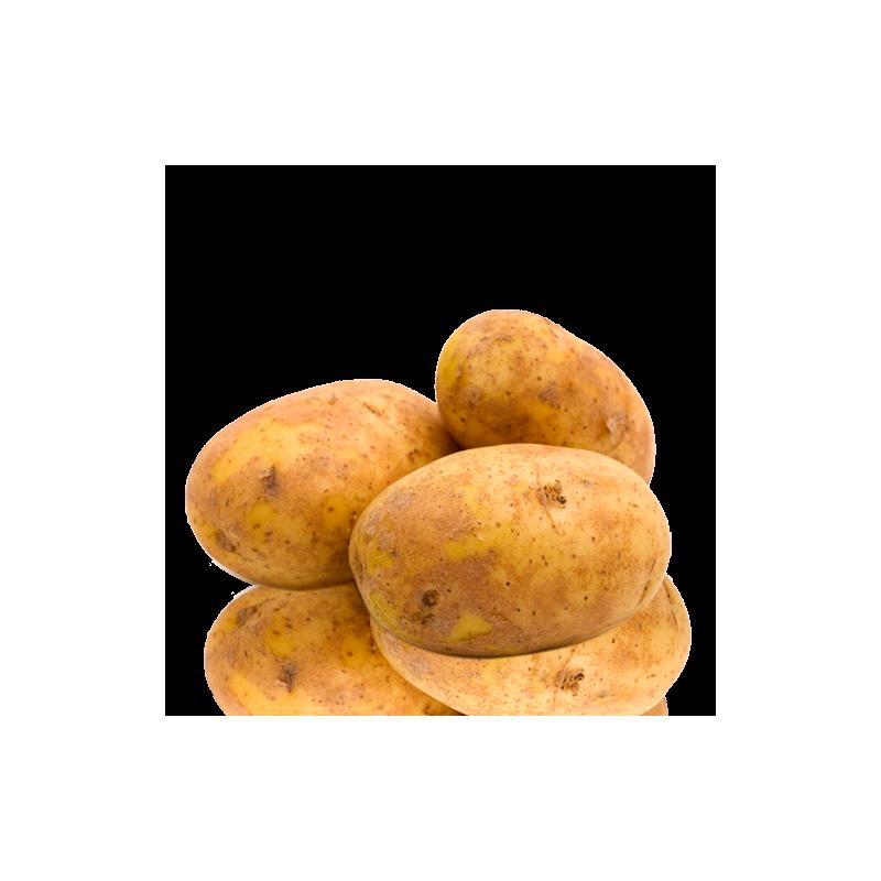 Patata kennebek