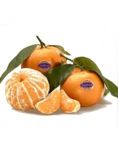 Mandarina Bugui