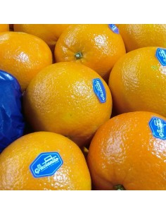 Naranja Gracianito (sevillana)
