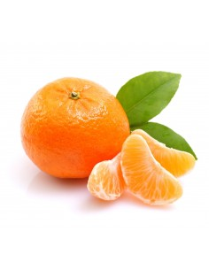 Mandarina Llusar