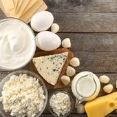 La llet, el iogurt, el formatge o la mantega tenen efectes beneficiosos per a la nostra salut. Però què ens aporten específicament cadascun d'ells?  • LA LLET És un aliment d'alt valor nutritiu, ja que té micronutrients (com ara vitamines A, D, E i calci) i macronutrients (com proteïna d'alt valor biològic, greixos, i carbohidrat com la lactosa). Per tant, si hi ha intolerància a la lactosa caldrà evitar aquest producte. Les begudes vegetals no aporten el mateix que la llet animal, així que no es poden considerar llets.  • EL IOGURT  És un derivat de la llet que s'obté quan s'afegeixen ferments làctics a la llet, els quals degraden la lactosa i la transformen en àcid làctic. Les proteïnes i els greixos es digereixen millor que els de la llet.  • EL FORMATGE És un producte fresc, curat o semi-curat, que s'obté de la separació del sèrum després de la coagulació de la llet natural mitjançant el quall o un altre coagulant. Ric en proteïnes, calci i vitamines A i D. Segons el tipus de formatge la quantitat de greix varia. Els que no són fermentats, tipus formatge fresc o mató, són l'opció més saludable i tenen una millor digestibilitat.  • LA MANTEGA I EL GHEE O GHI La mantega és greix comestible que s'obté batent la crema de la llet de la vaca.
